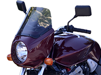 Rifle Nightflight Fairing on Indian Scout
